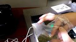 Luminary Beacon - Cannabis / Marijuana THC and CBD Analyzer