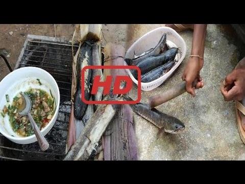 Genial!! Kambodschanische Kinder Grillen Viele Fische Zum Mittagessen - Land Essen