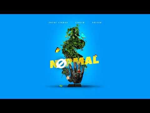 Entre Linhas x Leozin x Thiago - NORMAL (Prod. Jay Kay) 💵