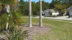 12520 Deerberry Ln, Tampa, FL 33626 WestChase Westwood Lakes Real Estate Video