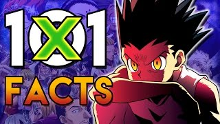 101 Hunter X Hunter Facts That You Probably Didn't Know! (101 Facts) | HXH