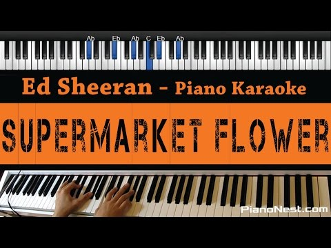 Ed Sheeran - Supermarket Flower - Piano Karaoke / Sing Along / Cover with Lyrics