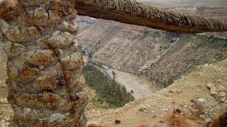 Magic City  ghoufi  Algeria  Biskra Batna