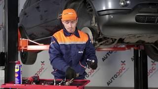 Montaggio Biellette Barra Stabilizzatrice posteriore e anteriore BMW X5 (E53): video gratuito