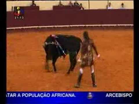 insolito:João Salgueiro leva cornada em pleno campo pequeno!