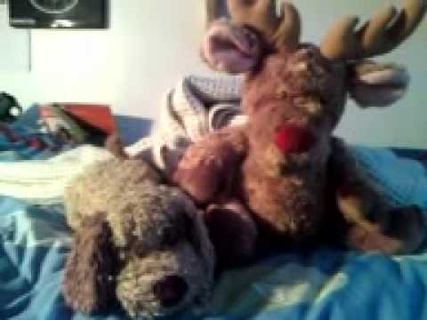 my toy animals singing like a bunch of looneys!