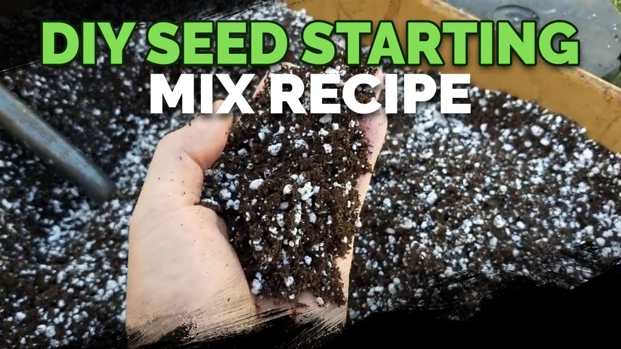 How To Make The Best Seed Starting Mix and Potting Soil