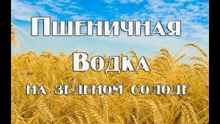 Пшеничная водка (самогон из пшеницы): рецепт браги, перегонка, очистка
