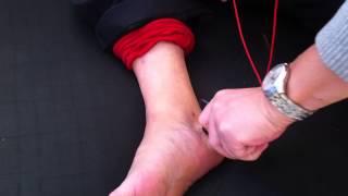 护垫疗法足部反射区按摩