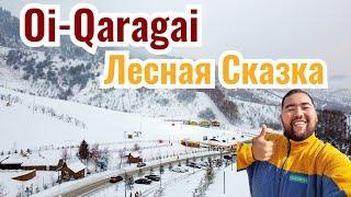 Ой Карагай Лесная Сказка 2020 год Обзор курорта Открытие зимнего сезона