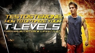 Testosterone: How To Optimize Your T-Levels Through Nutrition & Lifestyle!