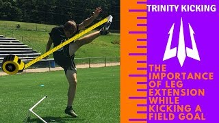 Importance of Leg Extension
