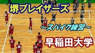 再アップ【黒鷲旗2019】堺ブレイザーズvs早稲田大学・スパイク練習(volleyball)