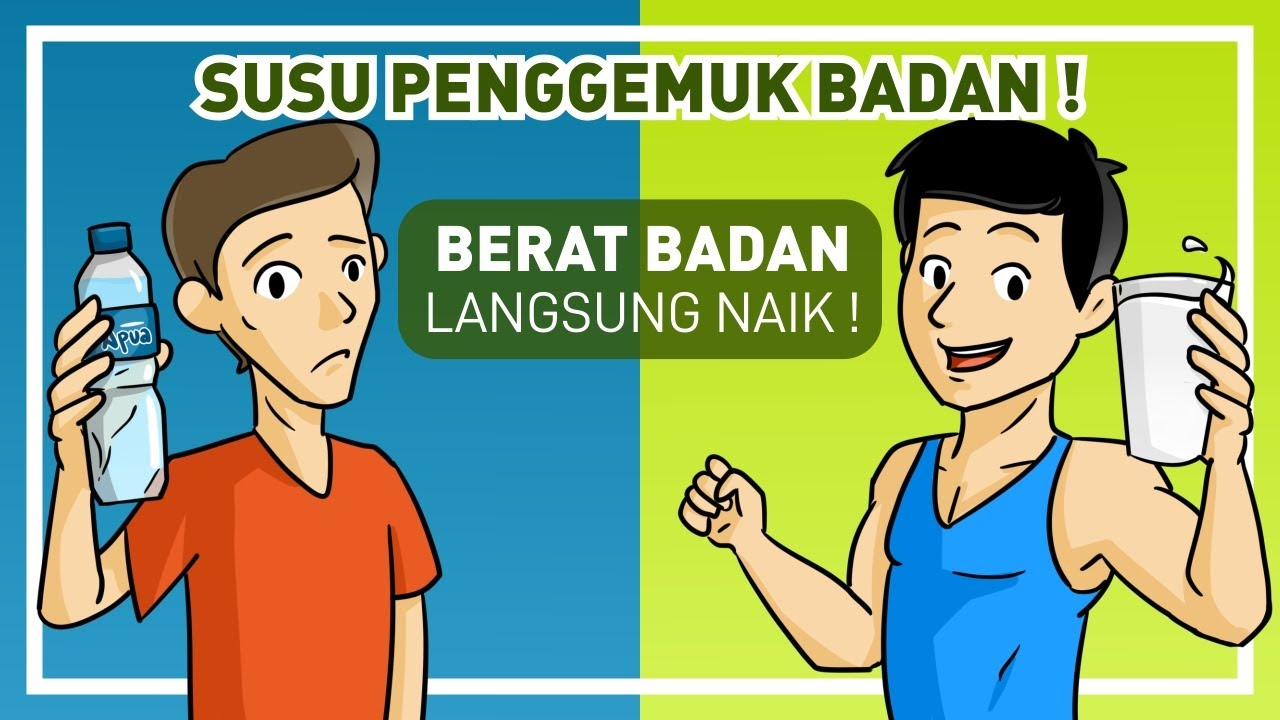 SUSU PENAMBAH BERAT BADAN (CARA DIET UNTUK MENGGEMUKKAN BADAN)