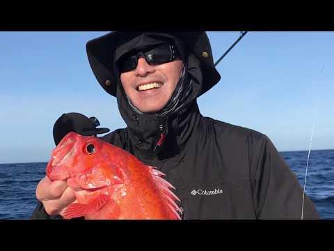 Mirage Sportfishing, Channel Islands, California March 2019