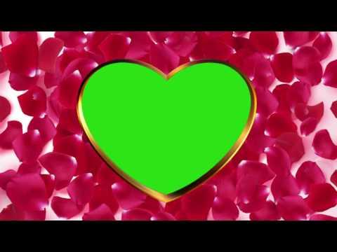 Футаж Рамка Золотое сердце с лепестками роз хромакей