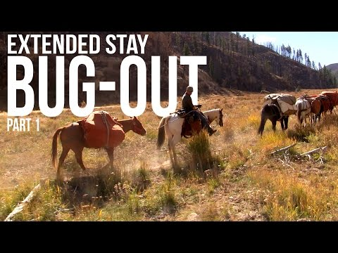 Bug Out Extended Stay Part 1