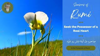 "Seasons of Rumi - ""Seek the Possessor of a Real Heart"" - (In Persian and English)"