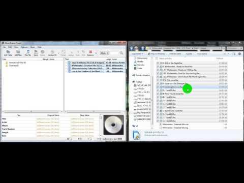 MusicBrainz Picard 1.3.2 - Stáhne ID3 info nepojmenovaných hudebních skladeb (CZ 1080p).avi