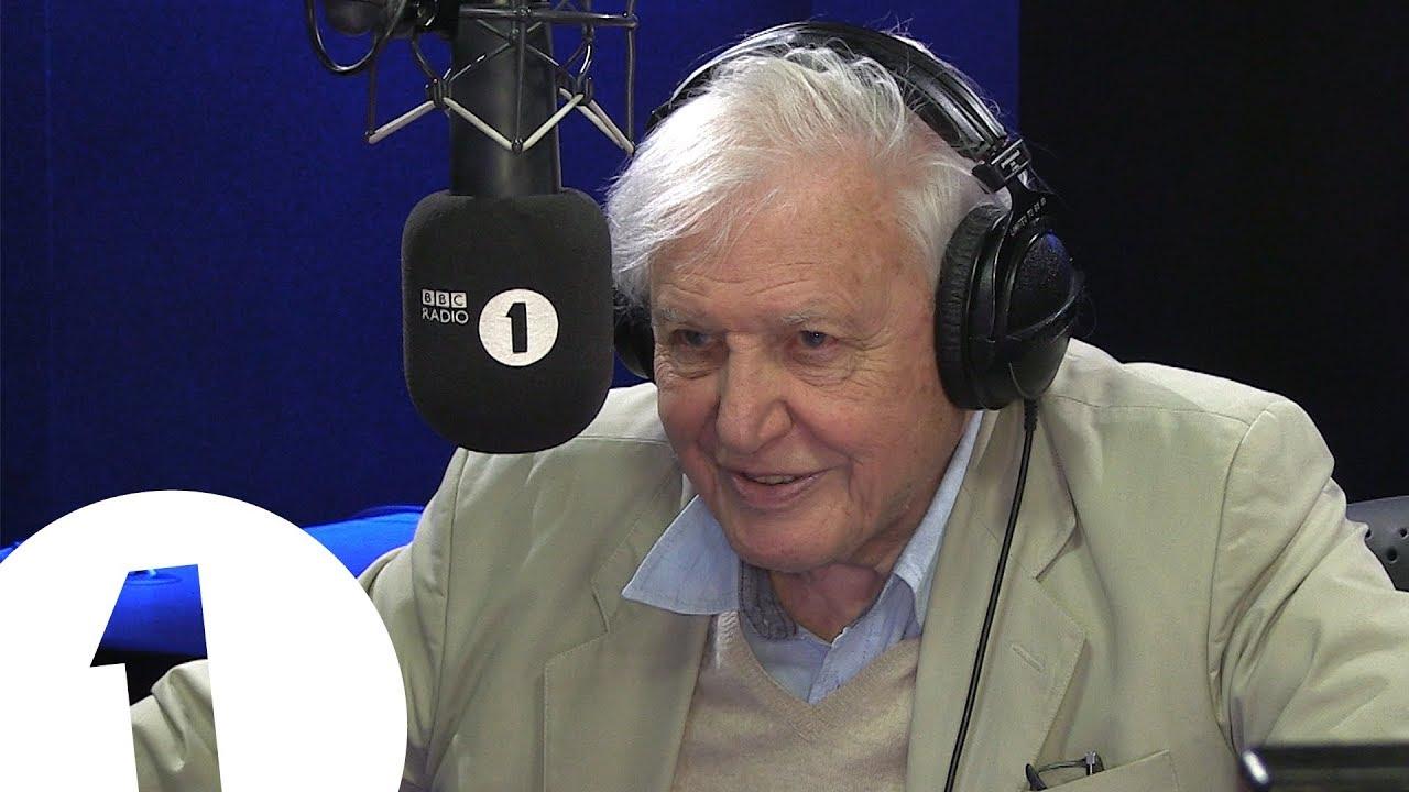 Sir David Attenborough is Radio 1's newest DJ... at 92