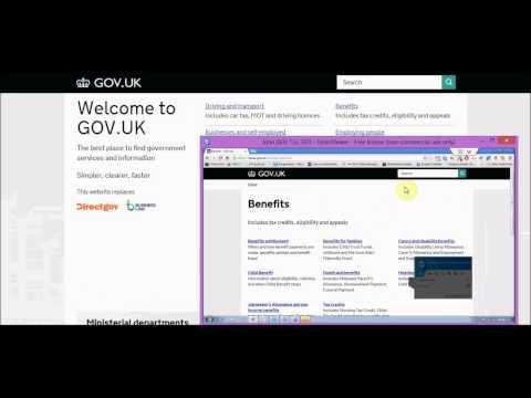 Adviser and client Gov.uk support