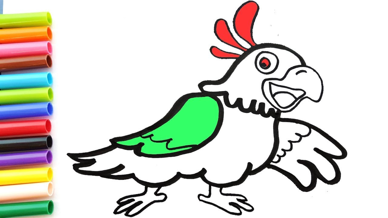 Parrot bird coloring books | How to Draw parrot bird | Coloring ...