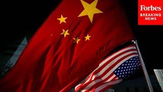 Dem Lawmaker Decries 'Idiotic Battles' Among Senators While China Threatens Democracy