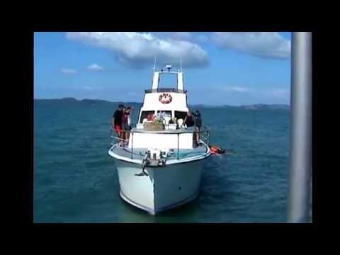 Travel journal: NZ North island 2002