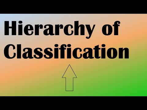 Biology Hierarchical Classification and Taxonomy