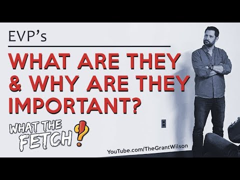 EVP's #1: What Are They & Why Are They Important?