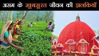 शांत और खूबसूरत राज्य है असम, हर तरफ दिखता है विकास #Assam #NorthEast