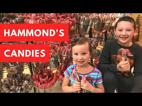 How Is A Candy Cane Made? - Hammond's Candy Factory Tour - Denver, Colorado