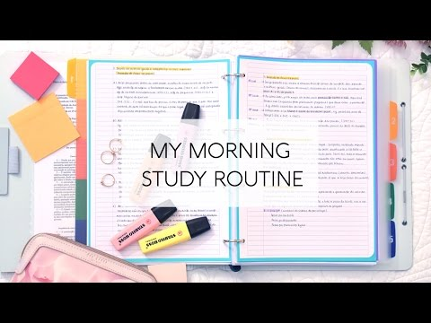 My Morning Study Routine
