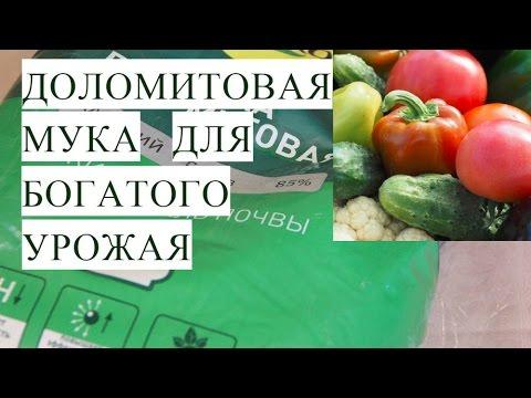 Доломитовая Мука для Богатого Урожая. Работает! Проверено!