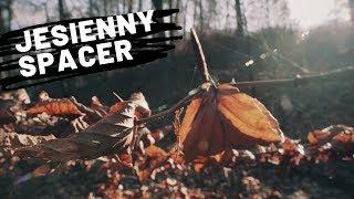Obraz dla: Jesienny spacer