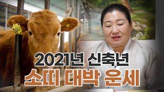 [용한점집]2021년 신축년 '소띠' 대박나는 운세[25세, 37세, 49세, 61세, 73세…
