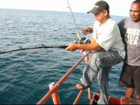 ปลาช่อนทะเล 25.5 โล ณ แสมสาร