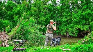 За это я люблю рыбалку Выкормил и ОНИ пришли Река на которой прошло детство