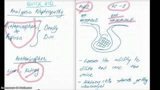 WHAT IS ANALGESIC NEPHROPATHY