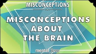 Misconceptions about the Brain- mental_floss on YouTube (Ep. 49)