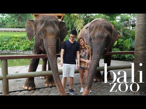 Wanderlust: Bali Zoo