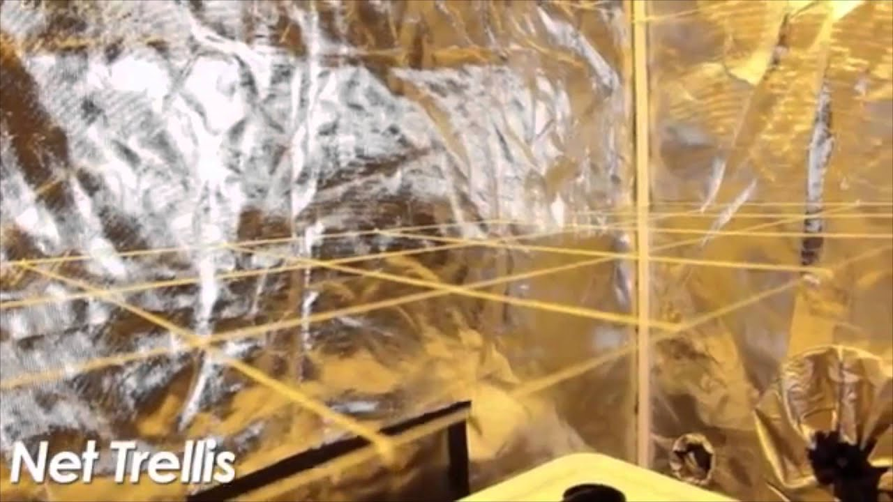& Worldu0027s Best Grow Room Setup with Gorilla Grow Tent - YouTube