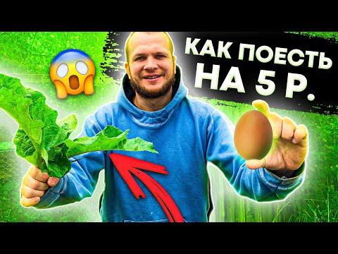 Как поесть на 5 рублей?!
