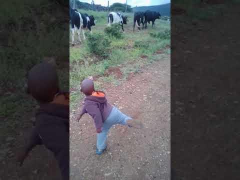 "Bobo ""Mfanawepiki"" - Inxeba Lendoda... FULL MUSIC VIDEO"