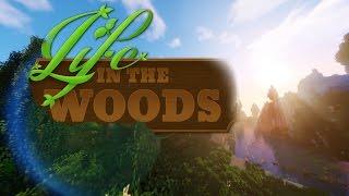 LIFE IN THE WOODS [001] [Das erste Mal - Willkommen im Wald] [Let's Play Gameplay Deutsch German] thumbnail