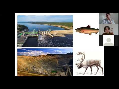 Биоразнообразие и экосистемы