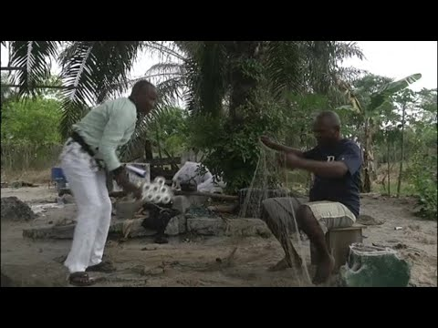 Congo, PROTECTION DES TORTUES MARINES