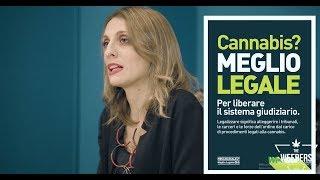 Cannabis: #MEGLIOLEGALE - intervista ad Antonella Soldo