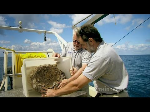 LOST SHIPS OF ROME (Documentary)