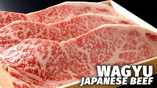 Japan's Most Expensive Beef | Wagyu
